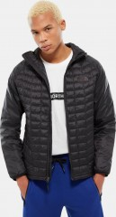 Mens Thermoball Sport Hoodie