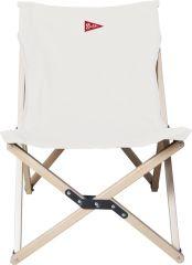 Chair Flycatcher