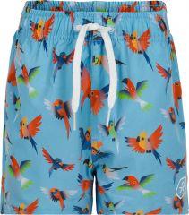 Shorts 720033