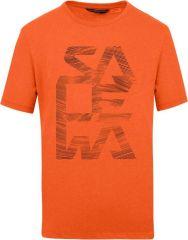 Salewa Print Dry'ton M T-shirt
