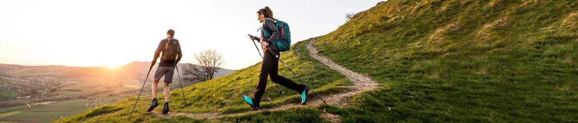 Wander- und Trekkingstöcke