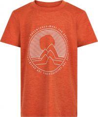 Tshirt SS 740261